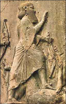 Darius the great king of persia